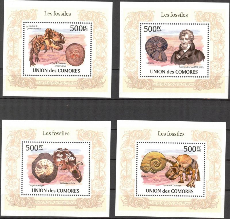 {316} Comoros 2010 Fossils Shells 4 S/S Deluxe MNH**
