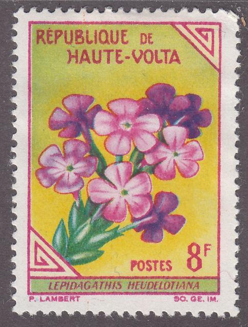 Burkina Faso 118 Lepidagathis Heudelotiana 1963