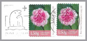 LUXEMBOURG 2017 - Rose Varieties - GD Adolphe rose - pair on cover - Sc 1474a