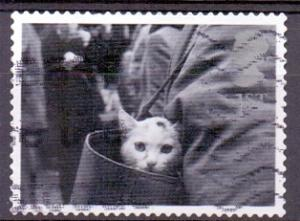 Great Britain 2001 used cats and dogs 1st cat in handbag  #