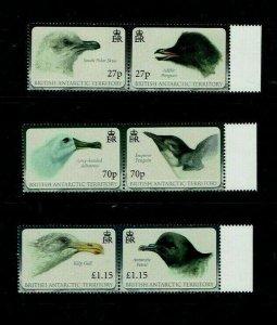 British Antarctic Territory: 2010, Antarctic Birds, MNH set