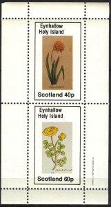 {E139} Eynhallow Scotland Flowers (2) Sh.2 MNH Cinderella !!
