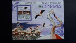 Comoro Islands 2009. - Birds ** MNH Block (perforated)