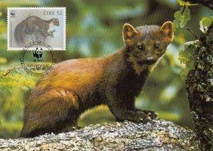 Ireland 1992 Maxicard Sc #871 52p Pine martens WWF