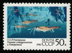Soviet Union, 50 kop, MNH ** (T-6855)