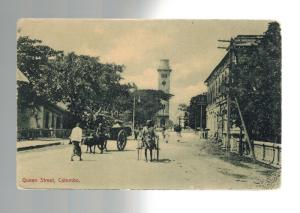 1900s Ceylon Queen Street Colombo Real Picture Postcard Mint