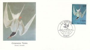 1995, France: Common Tern, FDC (D13899)