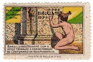 (I.B) Brazil Cinderella : Independence Centenary (Rio de Janeiro 1922)