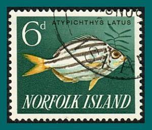 Norfolk Island 1962 Fish, 6d used  #50,SG43