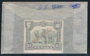 Nyassa 53 Unused Camels 1911 (N0474)