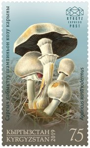 Stamps of Kyrgyzstan 2019. - Stamp.  122M. Yellow-staining Mushroom.