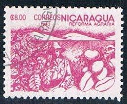 Nicaragua Coffee 8 (NP7R302)