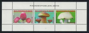 Suriname Fungi MS SG#MS2847