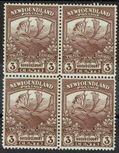 NEWFOUNDLAND 1919 CARIBOU 3C BLOCK */**