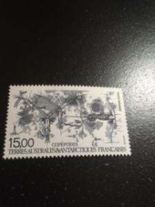 french southern & antarctic sc C128 MNH