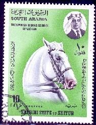 Horse, Spanish Riding School of Vienna, South Arabia used