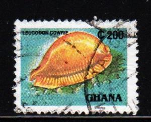 Ghana - #1357E Leucodon Cowrie - Used