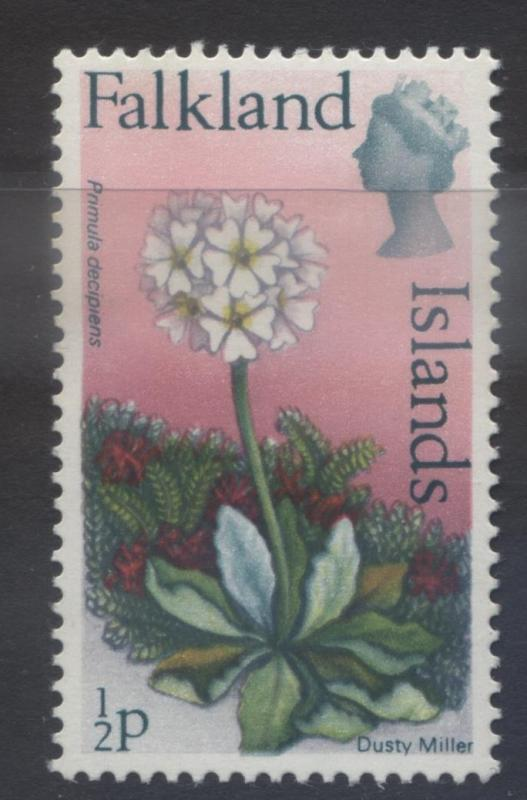 Falkland Is.-Scott 210 - Flowers-Dusty Miller- 1972 - MNH -Single 1/2p Stamp