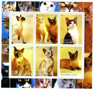Tajikistan 2000 Domestic Cats Sheet (6) Perforated mnh.vf