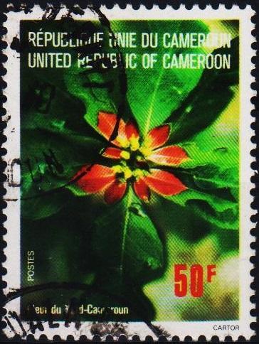 Cameroun. 1976 50f. S.G.767 Fine Used