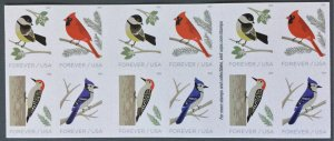 US #5317-5320 MNH Booklet of 4 Birds of Winter (.50)
