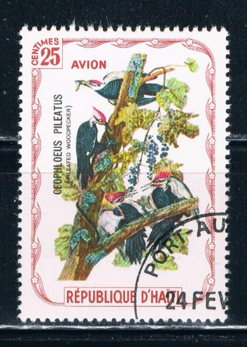 Haiti  Used Birds Woodpecker (H0015)
