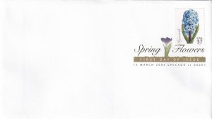 2005, Spring Flowers-Hyacinth, USPS, FDC (E11971)
