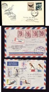 Three covers with Birds on stamps-#11