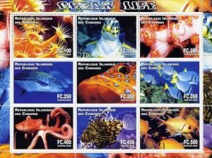 COMORO ISLANDS 2000 Ocean Life Sheet (9) Perforated mnh.vf