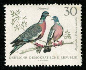 Birds (5143-Т)