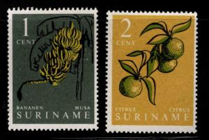 Suriname Scott 284-285 MNH** 1961 edible plant  short set