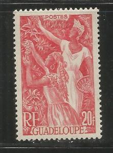 GUADALOUPE, 203, MH, FARMING RED