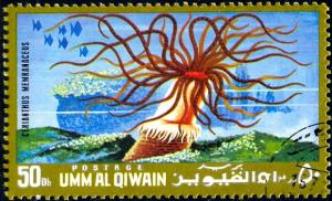 Marine Life, Tube Dwelling Anemone, Umm Al Qiwain stamp used