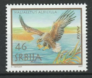 Serbia 2007 Birds joint issue Austria MNH stamp