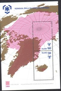 Iceland Sc  1162 2009 International Polar Year stamp sheet mint NH