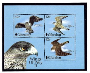 Gibraltar 853d MNH 2000 Planes and Birds S/S  (KA)