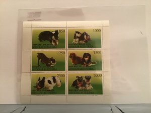 Republic of Amurskaya  dogs small breeds mint never hinged stamps Sheet R23535
