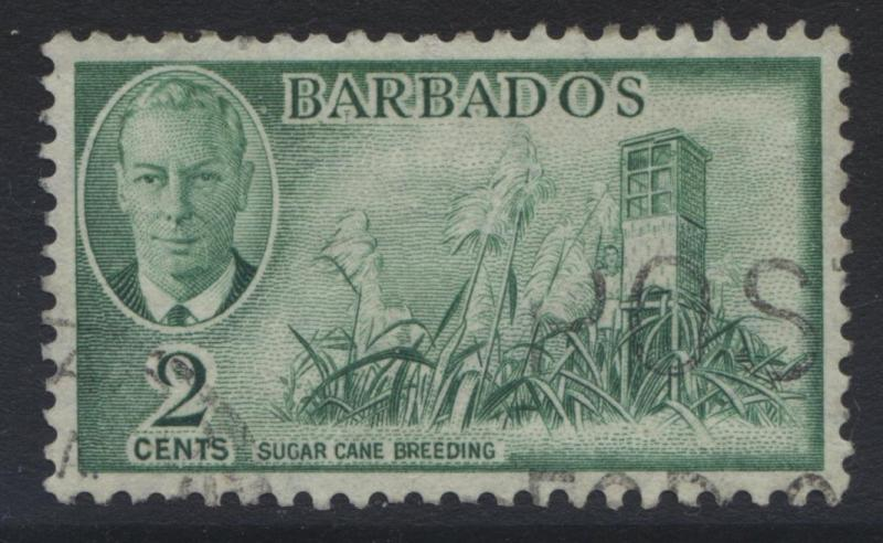 Barbados - Scott 217 - KGVI -1950 - VFU - Definitive - 2c - Emerald