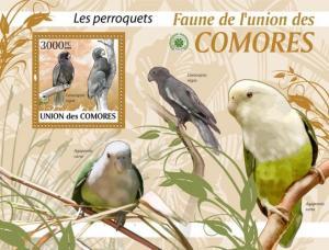 COMORES 2009 SHEET PERROQUETS PARROTS PAPAGAIOS LOROS BIRDS OISEAUX AVES cm9412b