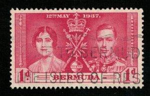 Bermuda 1d. (TS-310)