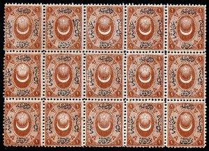 Turkey Stamp  1865 POSTAGE DUE STAMP MNH/OG BLK OF 15