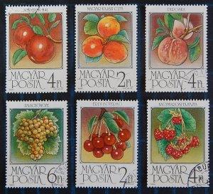 Fruits, Hungary, (2564-T)