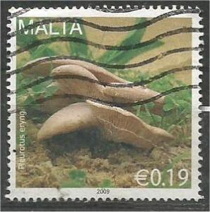 MALTA, 2010, used 19c, Mushrooms Scott