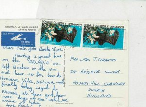 new caledonia & dependencies 1970s bats air mail  stamps card ref 21276