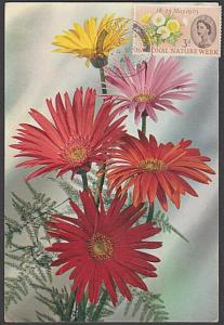 GB 1963 Nature 3d on maxi card - 1950s postcard - not FDC..................57311