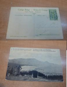 Belgian Congo 5c Tree Occupation Opt PPC #41 Unused (23bee)