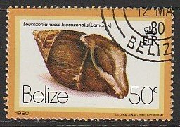 1980 Belize - Sc 482 - used VF - Leucozonia nassa