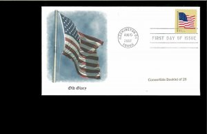 2007 FDC American Flag Washington DC