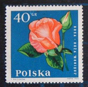 Flowers, (2591-T)
