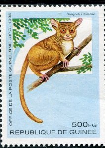 Guinea 1995 THE WESTERN DWARF SQUIRREL 1 value Perforated Mint (NH)